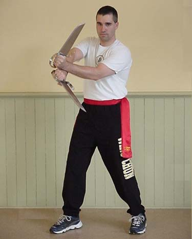 Sifu Dominique Emond Butterfly Swords